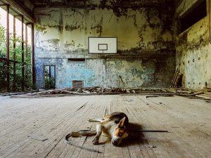 chernobyl-basketball